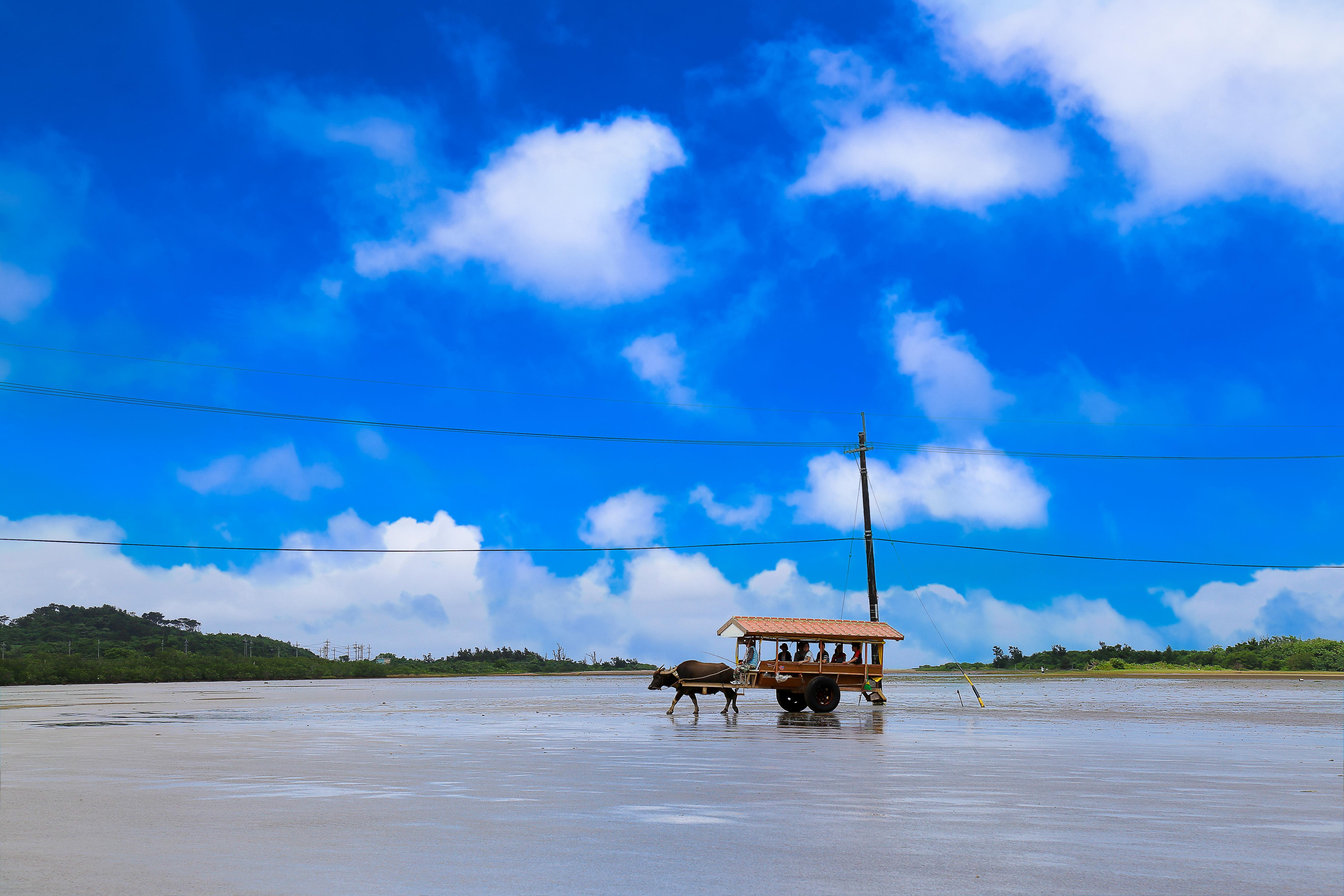 #蜜月旅行 #沖繩 #觀光景點參觀